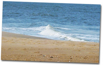 Fenwick Island, Delaware Information, Fenwick Island Weather