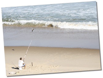 Surf Fishing in Fenwick Island, Delaware