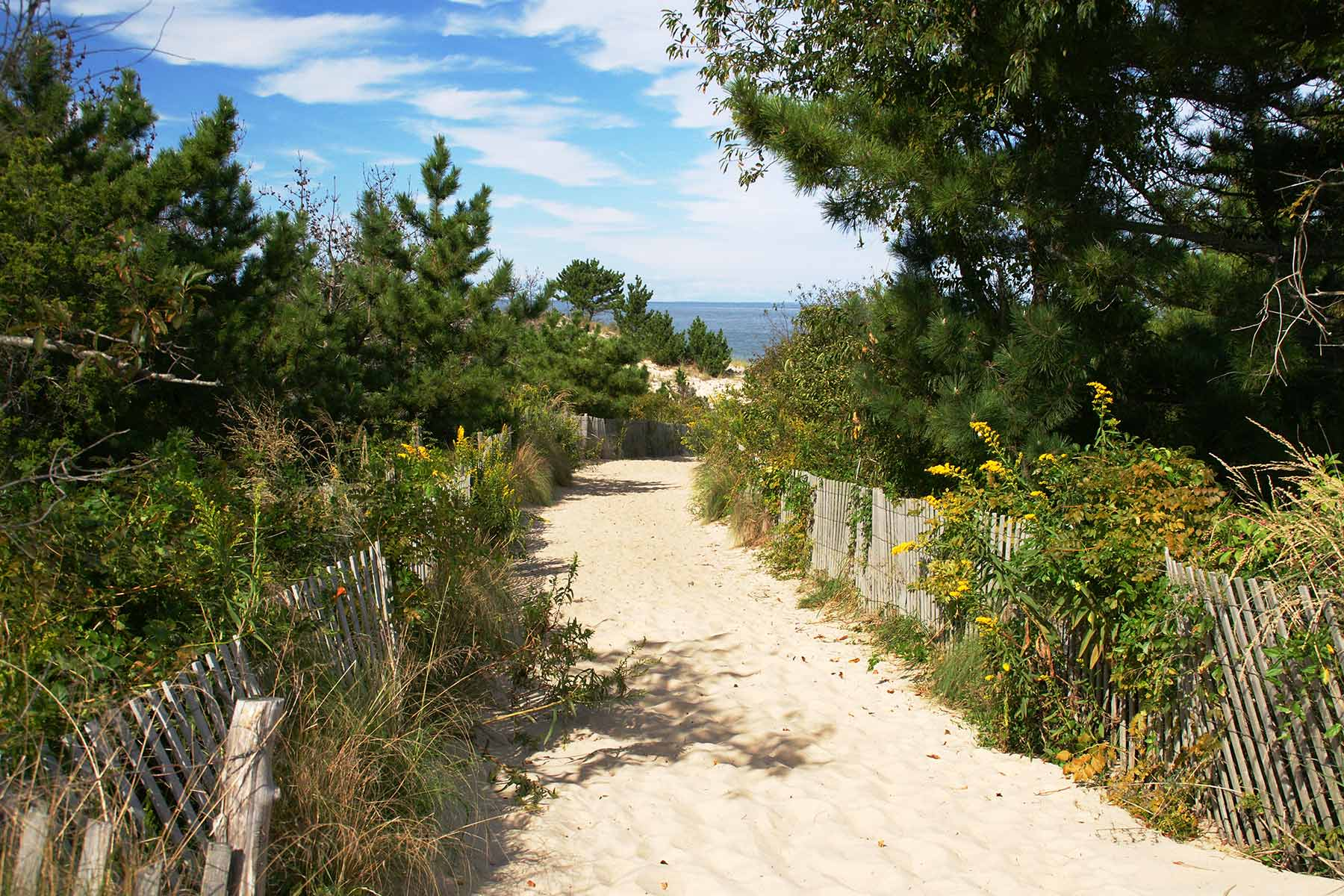 Campgrounds in Lewes, Rehoboth Beach, Dewey Beach, Bethany